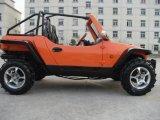 EPA (LZG800E)를 가진 800cc Jeep Kart/Buggy/Go Kart