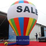 Ballon van de Grond van de Hete Lucht van Oxford toont de Kleurrijke Opblaasbare Gevormde voor Handel
