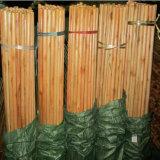 Punho do espanador do algodão e vara de madeira dos acessórios da vassoura