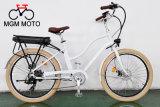 고아한 도시 자전거 뚱뚱한 타이어 도시 전기 자전거