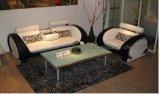 Sofa de cuir véritable de salle de séjour (CK508)