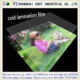Film froid anti-vieillissement de laminage de PVC pour la protection de guichet