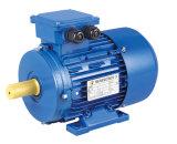 Motor de inducción ruso aprobado del GOST
