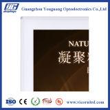 Rectángulo ligero magnético de aluminio blanco de fabricación del espesor LED de 30m m