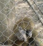 Reticolato caldo del cavo dell'acciaio inossidabile come forte rete metallica del giardino zoologico