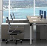 Раскройте офисную мебель рабочей станции офиса для новой