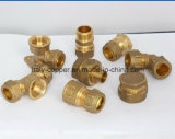ISO9001 Certified Brass Forged Compression End Male Socket (AV7004)