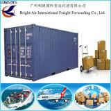 Transporte do recipiente de frete do oceano das companhias do frete de China a Santa Cruz, La Paz, Cochabamba
