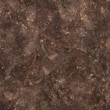 azulejos de piso rústicos de la porcelana de los 60X60cm (E6055)