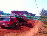 Sinotrck HOWO 8X4のダンプトラック336/371HPの前部上昇エチオピア