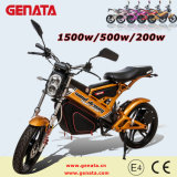 1500With500With200weec Folding Electric Bike (GM890E)