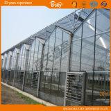 Type intensivement utilisé de Venlo serre chaude en verre pour la plantation