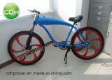 Roues motorisées de /Bicycle de bicyclette