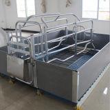 ブタのための電流を通されたフィールド雌豚のベッド