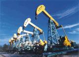 Precision de grande resistência Roller Chain para Transmission (campo petrolífero Chains)
