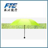 Paraplu's van de Zon van de Polyester van Hotest de Open Promotie