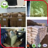Grain organique rôti de graines de citrouille de Gws