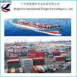 Logística ultramarina do frete de mar da agência de transporte de China a Puerto Zarate, Argentina