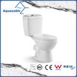 Ceramische Toilet van de Kast van Siphonic van de badkamers het Tweedelige (AT1010)