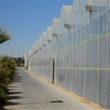 Invernadero agrícola plástico de la película de polietileno de la venta directa de la fábrica de China - Helen