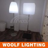 KTV 바 홈을%s LED 전기 스탠드 표준 램프