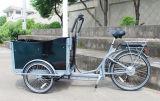Rad-elektrisches Fahrrad der Maximallast-200kg drei