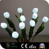 Luzes brancas da flor do diodo emissor de luz do Tulip da simulação