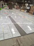 백색 Carrara 대리석 마루 도와가 이탈리아 대리석에 의하여 값을 매긴다