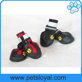 Chaussures uniques antidérapage raboteuses de crabot d'animal familier d'approvisionnement de produit d'animal familier