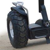 De alta velocidad y distancia de la vespa eléctrica del camino con el altavoz de Bluetooth para la venta