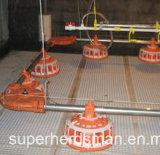 Equipo automático de las aves de corral para la gerencia de la parrilla del padre