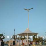 新しい中国の製品のモジュールデザインIP65立場の12W太陽街灯だけ