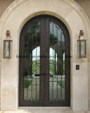 Porta de entrada feita sob encomenda da parte dianteira do ferro feito de China Facotry Derect