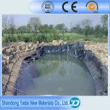 HDPE Geomembrane en buen precio del precio barato