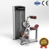 Amaestrador abdominal de la máquina de la aptitud del equipo de la gimnasia con 3 años de garantía