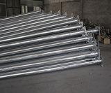 街灯を持つ熱いすくい電流を通された鋼鉄管状のポーランド人