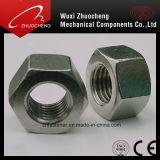 Écrous six-pans Steel304 316 inoxidables de DIN934 DIN936