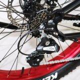 판매를 위한 전기 자전거를 접히는 20 인치 Samll