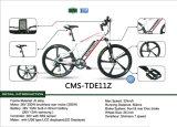 Populäres faltendes E Straßen-elektrisches Fahrrad der zwei Rad-Leistungs-