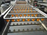 판매를 위한 명세 Commerical 식물성 세탁기에서 완료하십시오