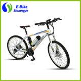 Neuer Entwurf 26 Zoll Heterotype Gefäß-Rahmen-Gebirgselektrisches Fahrrad
