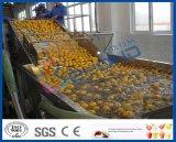 lavadora del vehículo de la arandela de la manzana de la lavadora de la fruta