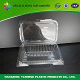 Recipientes de alimentos plásticos limpos e retangulares