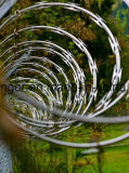 Провод утюга бритвы колючий/Concertina провод утюга