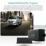 Perseguidor Tk104 del vehículo del G/M GPS con la plataforma en línea