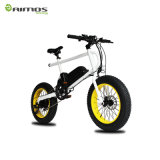 سعر اقتصاديّة سمين [متب] درّاجة كهربائيّة