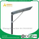Luz de calle solar accionada solar del control ligero del tiempo 5W-120W