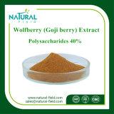 Estratto puro della pianta della polvere 40% del polisaccaride di Wolfberry della materia prima di 100%