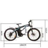 2016 neue konzipiert 26 Zoll En15194 Bicicleta Electrica