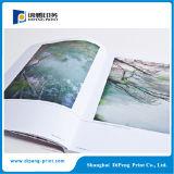 Onlinedrucken-Geschäfts-Broschüre in China